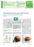 Pflanzenvermehrung ganz ohne Samen? - Vegetative Vermehrung an verschiedenen Pflanzen untersuchen Preview 1