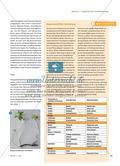 Pflanzenvermehrung ganz ohne Samen? - Vegetative Vermehrung an verschiedenen Pflanzen untersuchen Preview 4