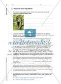 Jóvenes y deportes urbanos - Eine Lernaufgabe im Spanischunterricht Preview 5