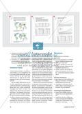 Die Globalisierung der Fleischproduktion - Räumliche Verlagerungsprozesse und ihre Ursachen Preview 3