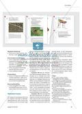 Mittelgebirge: Produkte der Plattentektonik Preview 4