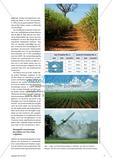 Flex Crops – Agrarboom mit Folgen Preview 2