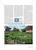 Das Stadtklima verbessern – aber wie?: Urban Gardening als Ressource einer nachhaltigen Stadtentwicklung Preview 3