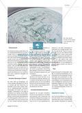 Neuer Rohstoffreichtum in der Arktis - Der Klimawandel legt Lagerstätten frei Preview 2