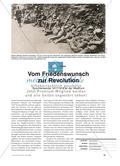 Vom Friedenswunsch zur Revolution - Epochenwende 1917/1918 an der Westfront Preview 1