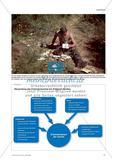 Analyse von Feldpostbriefen als historische Quellen Preview 2