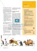 Give the Camels a Big Hand! - Als Tierdompteur eine Zirkusnummer moderieren Preview 2