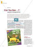 Can You See …? - Lesetexte im Anfangsunterricht Preview 1