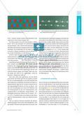 """Mathematische Darstellungen beim Thema """"Teile–Ganzes"""" in Klasse 1 Preview 2"""