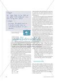 Forschen mit dem Taschenrechner - Zahlen und ihre Beziehungen auf der symbolischen Ebene untersuchen Preview 3