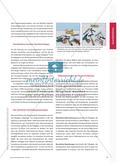 Raumvorstellungsvermögen – facettenreich und faszinierend: Aufgaben analysieren – Strategien kennen Preview 2