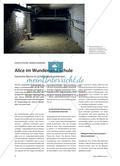 Alice im Wunderland Schule - Szenische Räume im Schulgebäude entdecken Preview 1