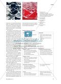 Landschaften drucken - Strukturen mit Tapete, Falt- und Knäuelpapier Preview 2