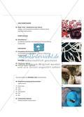 Einführung mit Zusatzmaterial Preview 4
