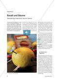 "Basalt und Bäume - Materialien bei Joseph Beuys' Idee der ""Batterie"" Preview 1"