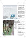 "Basalt und Bäume - Materialien bei Joseph Beuys' Idee der ""Batterie"" Preview 4"