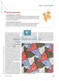 Erforschung von Escher-Parketten: Kongruenz und Symmetrie Preview 2