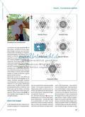 Platonische Körper - Geometrische Begriffsbildung, Kunst und Inklusion in einem Projekt Preview 2
