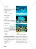 Ein Tauchabzeichen erwerben - Die Unterwasserwelt sicher beherrschen Preview 5