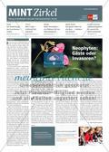 MINT Zirkel - Ausgabe 4, Dezember 2017 Preview 1