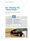 """Von """"Planking"""" bis """"Harlem Shake"""" - Das Internet-Mem als Inhalt für den Sportunterricht Preview 1"""