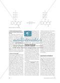 Lebensmittelzusatzstoff Riboflavin - Vergleich verschiedener Herstellungswege und Isolierung aus Puddingpulver Preview 3