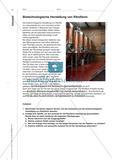 Lebensmittelzusatzstoff Riboflavin - Vergleich verschiedener Herstellungswege und Isolierung aus Puddingpulver Preview 6