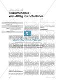 Siliziumchemie – Vom Alltag ins Schullabor Preview 1