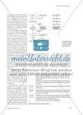 Redoxreaktionen und E-Shisha - Untersuchung einer Volta-Zelle Preview 2
