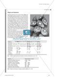Nachwachsende Rohstoffe – immer nachhaltig?: Nutzungskonflikt am Beispiel von Palmöl und Palmkernöl Preview 2