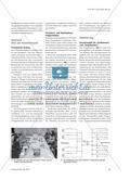 Der Strom kommt einfach aus der Steckdose? - Modell eines Energieversorgungsnetzes im Unterricht Preview 2
