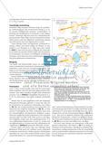 Wellenoptik - Ein Überblick über die fachlichen Grundlagen Preview 6