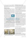 Wellenoptik unterrichten - Didaktische und methodische Anregungen Preview 3