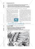 Gegen den Strom? - Der Netzausbau im Spannungsfeld von Eigeninteresse und Umweltschutz Preview 5