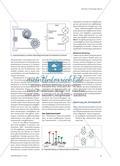 Modelle in der Elektrizitätslehre - Ein didaktischer Vergleich verbreiteter Stromkreismodelle Preview 4