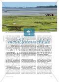 Tourismusgebiete als Ziel von Klassenfahrten - Drei Beispiele für die Nordseeküste und die Nordseeinseln Preview 2
