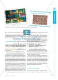 Was haben Glasbausteine mit dem Malrechnen zu tun? - Kinder tauschen sich über multiplikative Strukturen in Fotos aus Preview 2