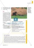 How the Elephant Got Its Trunk - Ein Tier-Märchen von Rudyard Kipling Preview 4