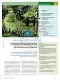 Mitos Brasileiros: Märchenfiguren aus dem Regenwald im Musikunterricht Preview 1