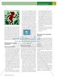 Mitos Brasileiros: Märchenfiguren aus dem Regenwald im Musikunterricht Preview 5