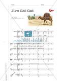 Zum Gali Gali - Singen und Klassenmusizieren Preview 3