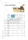 Zum Gali Gali - Singen und Klassenmusizieren Preview 4