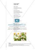 Frühling 1946 - Gedichtinterpretation mit dem Schwerpunkt einer komplexen Kontextualisierung Preview 2