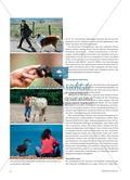 """""""Hund – Katze – Maus"""": Tiere in Texten Preview 3"""