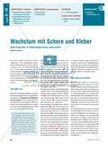 Wachstum mit Schere und Kleber - Änderungsraten in Säulendiagrammen Preview 1