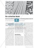 Die schnellste Nudel - Naturwissenschaftliche Arbeitsweisen im fächerübergreifenden Unterricht Preview 1