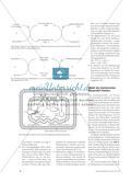 """Vom """"Blue Bottle"""" zum Baumannschen Versuch - Didaktische Analyse von Modellversuchen zur Biokatalyse Preview 4"""