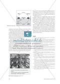 """""""Chemische Mathematik"""" - Mathematisierungen im Chemieunterricht verstehen lernen Preview 7"""