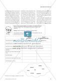 Stoffe erkunden - Materialien zum Umgang mit sprachlicher Heterogenität Preview 4