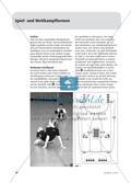 Medizin- und Tennisbälle - Eine vielseitige Übungssammlung Preview 7